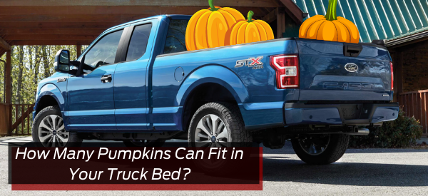 How Many Pumpkins Can Fit In Your Truck bed?